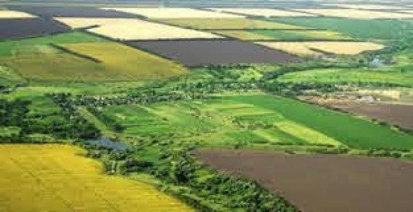 Об'єднані громади отримають землі сільськогосподарського призначення у своє розпорядження