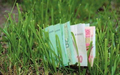 Понад 1,6 мільярда гривень сплатили орендарі власникам паїв на Кіровоградщині