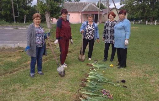 Село Аджамка прикрасили квітами